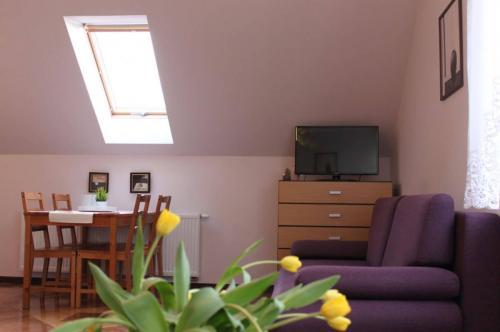 Apartament nr 1 (8)